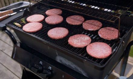 2″x2″ Vegetarian Section Granted On Backyard Grill
