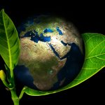 Esselstyn Quote: Environment